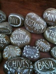 rock_herbs2